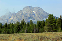 Mount Moran above the Pines