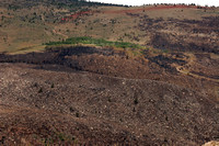 North Side of Sinks Canyon after Wildfire